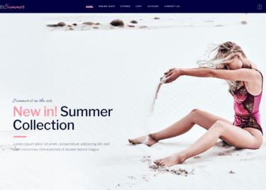 Beachwear Store